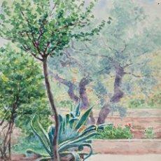 Arte: JARDÍN CON ÁRBOLES. ACUARELA SOBRE PAPEL. ATRIB. JULIAN DEL POZO. SIGLO XIX-XX.. Lote 162145430