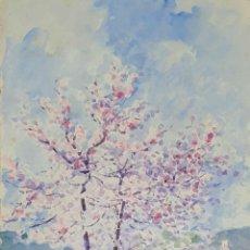 Arte: ALMENDROS EN FLOR. ACUARELA SOBRE PAPEL. ATRIB. JULIAN DEL POZO. 1932.. Lote 167772948