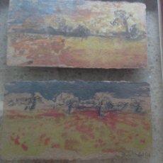 Arte: LUIS VIDAL (TEJADILLOS, CUENCA, 1951) PAREJA DE PAISAJES ENMARCADOS JUNTOS. Lote 171752757