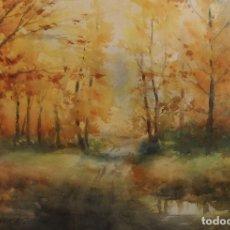 Arte: FELIP BRUGUERAS. Lote 173515504