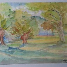 Arte: FEDERICO FISAS - JOAN FREDERIC FISAS MULLERAS - ARBOLES - COLECCIÓN OLOT 1980. Lote 176015910