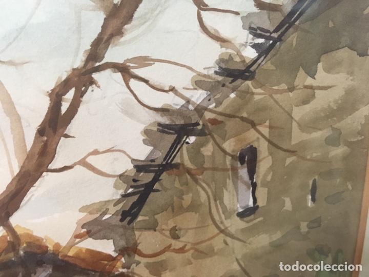 Arte: Acuarela firmada por Felipe Brugueras Pallach - Foto 6 - 177801530