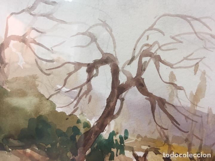 Arte: Acuarela firmada por Felipe Brugueras Pallach - Foto 13 - 177801530