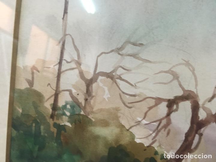 Arte: Acuarela firmada por Felipe Brugueras Pallach - Foto 14 - 177801530