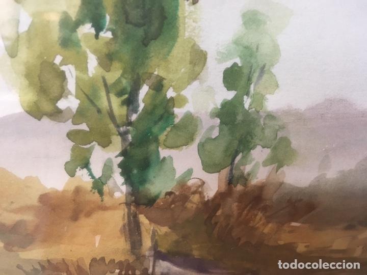 Arte: Acuarela firmada por Felipe Brugueras Pallach - Foto 14 - 177999144
