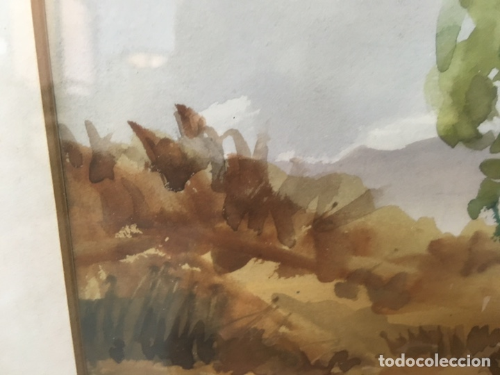 Arte: Acuarela firmada por Felipe Brugueras Pallach - Foto 15 - 177999144