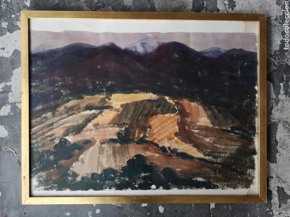 A. FERNANDEZ, FIRMADO Y FECHADO, 1963, MEDIDAS CON MARCO 68X54CM (Arte - Acuarelas - Contemporáneas siglo XX)