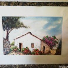 Arte: ACUARELA DEL PINTOR CANARIO. PASTOR CABRERA.. 52 CM POR 35 CM.. SOLO LA OBRA..AÑO 1964. Lote 181393655