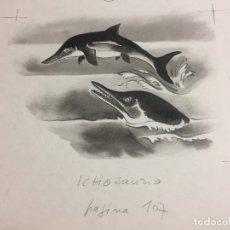 Arte: ICTIOSAURIO, ORIGINAL DE P.MONNERAT, FIRMADO, SELLADO Y REPRODUCIDO. Lote 183009922