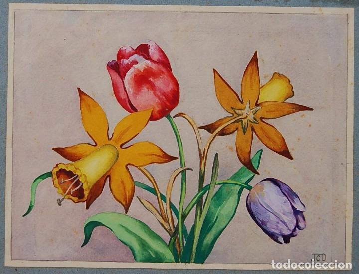 Arte: ORIGINALES 1930s - COLECCIÓN DE ACUARELAS (7): FLORES - Foto 10 - 183387978