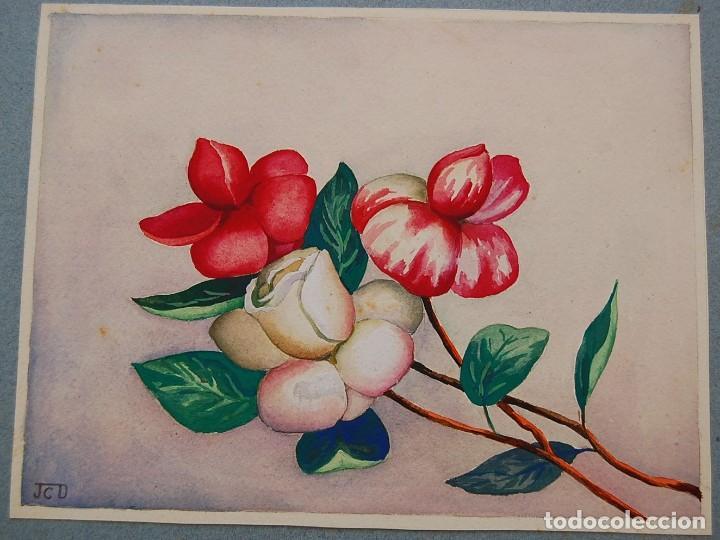 Arte: ORIGINALES 1930s - COLECCIÓN DE ACUARELAS (7): FLORES - Foto 14 - 183387978