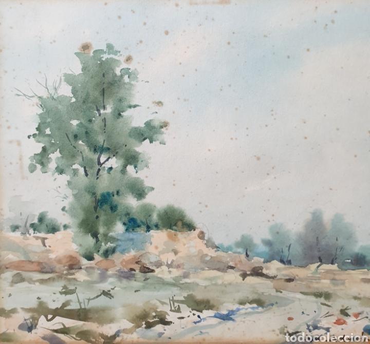 Arte: Martín Adroher Bosch (Gerona, 1905-1972) - Paisaje Rural.Aguada/cartulina.Firmado. - Foto 2 - 183565740