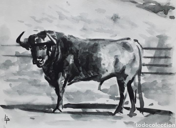 TORO 3. ACUARELA NEGRA SOBRE PAPEL. (Arte - Acuarelas - Contemporáneas siglo XX)