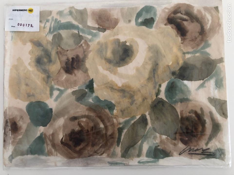 M. POCH. FLORES (Arte - Acuarelas - Contemporáneas siglo XX)