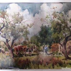Arte: ACUARELA GUILLEM FRESQUET. Lote 188517375