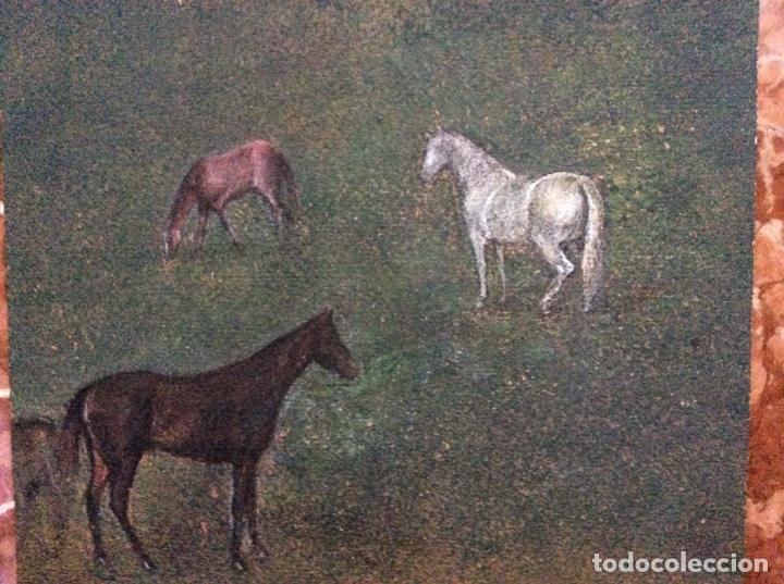 Arte: Acrílico antiguo caballos 48cmx34cm. - Foto 3 - 190016610