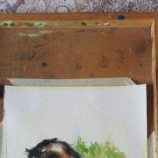 Arte: 4 ACUARELAS DE CABALLOS. MIDEN 50X35. FIRMADAS.. Lote 190191382