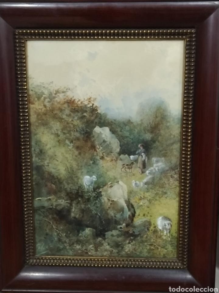 Arte: Acuarela firmada Flores. Buena calidad pictórica. - Foto 3 - 193848541