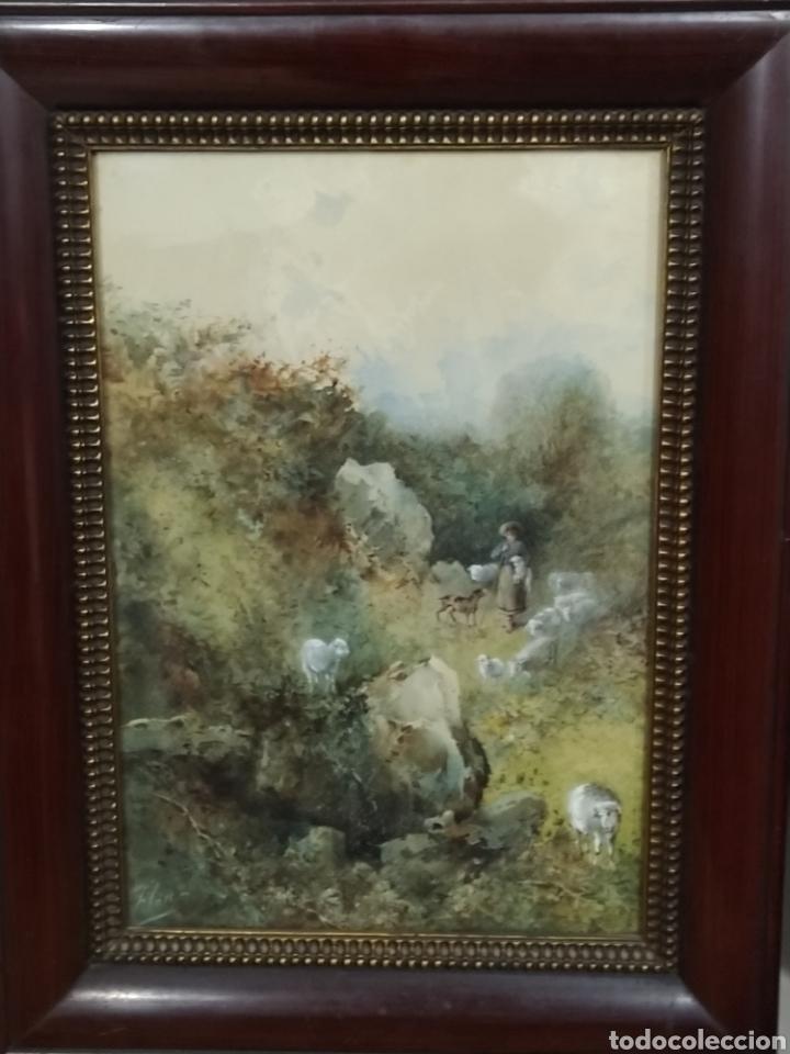 Arte: Acuarela firmada Flores. Buena calidad pictórica. - Foto 4 - 193848541