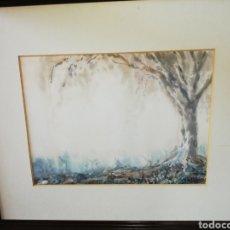 Arte: ACUARELA DEL PINTOR CANARIO RAÚL TABARES. Lote 194572797