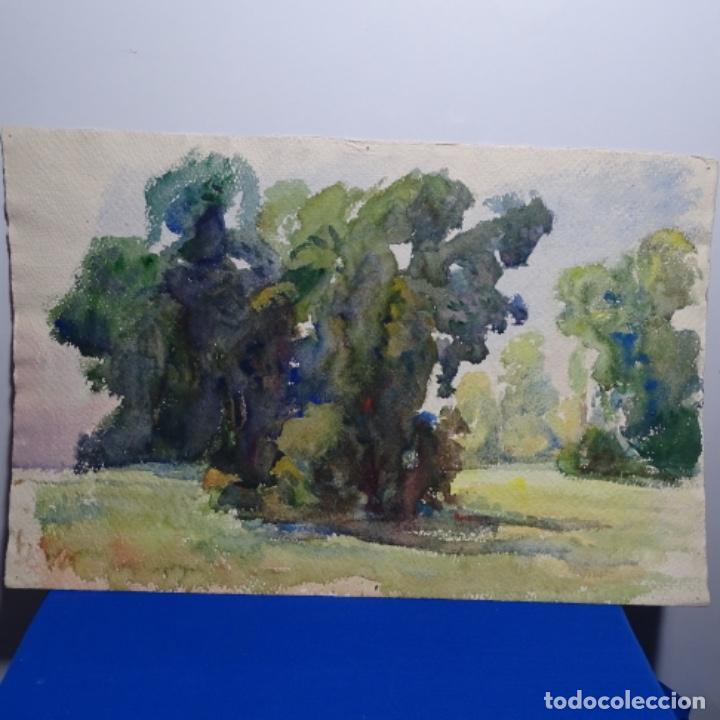 Arte: 2 acuarelas anónimas de buen trazo y colorido.por delante y detrás. - Foto 7 - 197673317