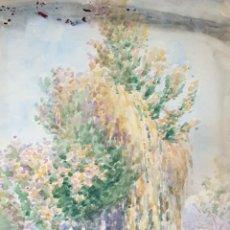 Arte: PAISAJE CON ÁRBOL. ACUARELA SOBRE PAPEL. FIRMADO JULIAN DEL POZO. 1930. Lote 198387176