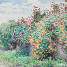 Arte: PAISAJE CON FLORES. ACUARELA SOBRE PAPEL. FIRMADO JULIAN DEL POZO. 1930. . Lote 198390272