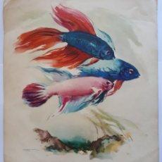Arte: REPRODUCCION DE EPOCA DE ACUARELA DE BALLESTAR. AÑOS 60S.. Lote 199722723
