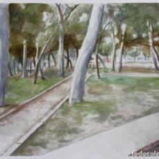 Arte: PINAR - CARLOS ASENSIO. Lote 203005218