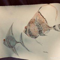Arte: DIBUJO TINTA TECNICA MIXTA PECES TROPICALES MARINA VALENCIANO PLAZA 66 ENROLLADO 48X70CMS. Lote 204021810