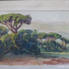 Arte: ACUARELA ANÓNIMA DE BUEN TRAZO.PINEDA.. Lote 212119117
