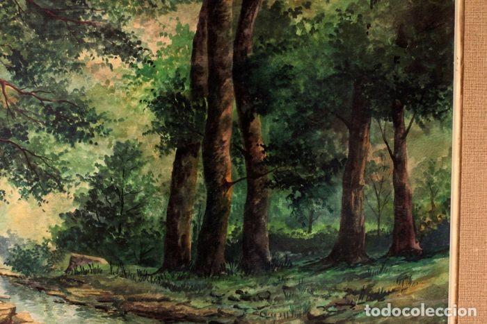 Arte: Vicente Melió Alfonso - Cervatillos en el bosque- Acuarelas - Firmado a mano - 76x63 enmarcado - Foto 2 - 218681750