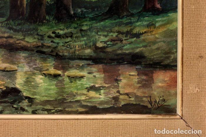 Arte: Vicente Melió Alfonso - Cervatillos en el bosque- Acuarelas - Firmado a mano - 76x63 enmarcado - Foto 6 - 218681750