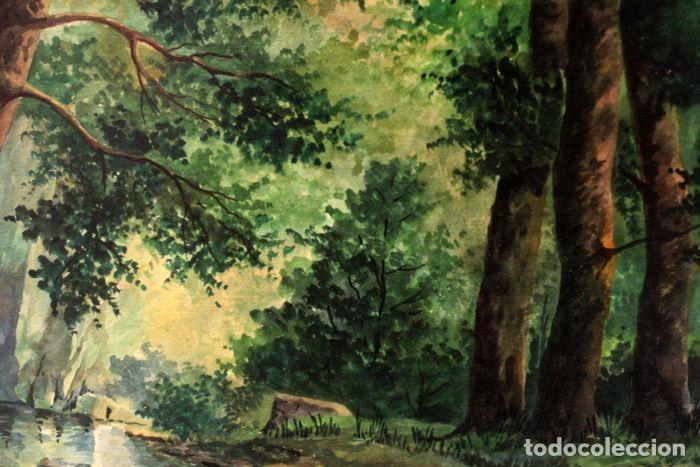 Arte: Vicente Melió Alfonso - Cervatillos en el bosque- Acuarelas - Firmado a mano - 76x63 enmarcado - Foto 14 - 218681750