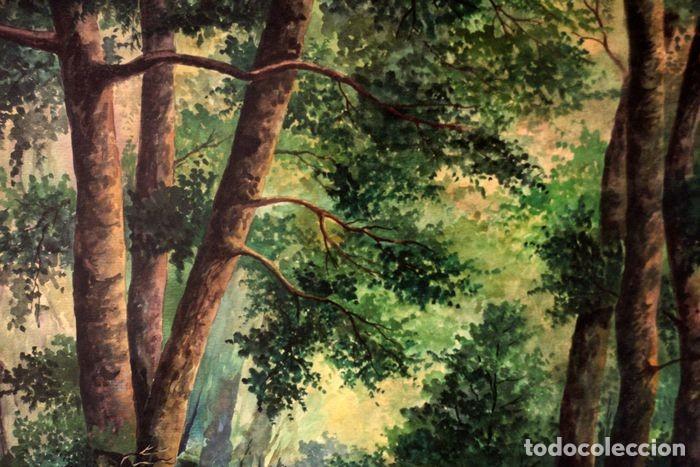 Arte: Vicente Melió Alfonso - Cervatillos en el bosque- Acuarelas - Firmado a mano - 76x63 enmarcado - Foto 16 - 218681750