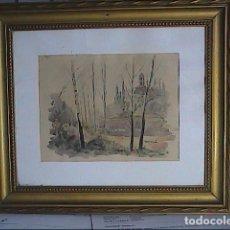 Arte: EXCELENTE ACUARELA DE RAMÓN CAMÍ ESTEVE. 1945. LA SEU D'ÈGARA. IGLESIA SANT PERE. TERRASSA.. Lote 219841136