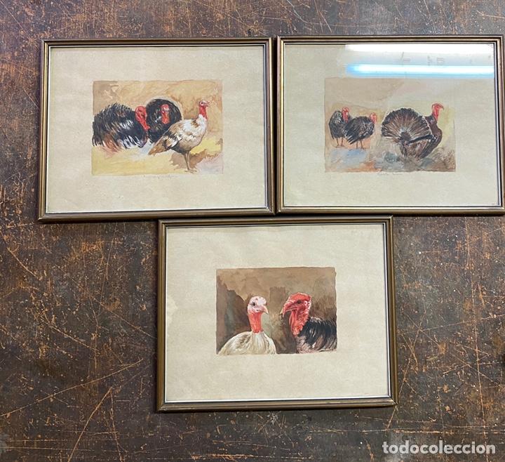 RAFAEL MARIA PADILLA 3 ACUALERAS/PAPEL MEDIDAS 24X30 (Arte - Acuarelas - Modernas siglo XIX)