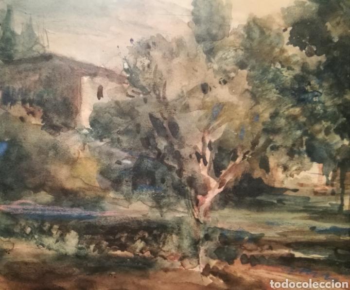 Arte: PAISAJE RURAL POR PERE MÁRTIR ARRAUT (PUIGCERDÀ, ÚLTIMO TERCIO DEL S.XIX) - Foto 4 - 236353240