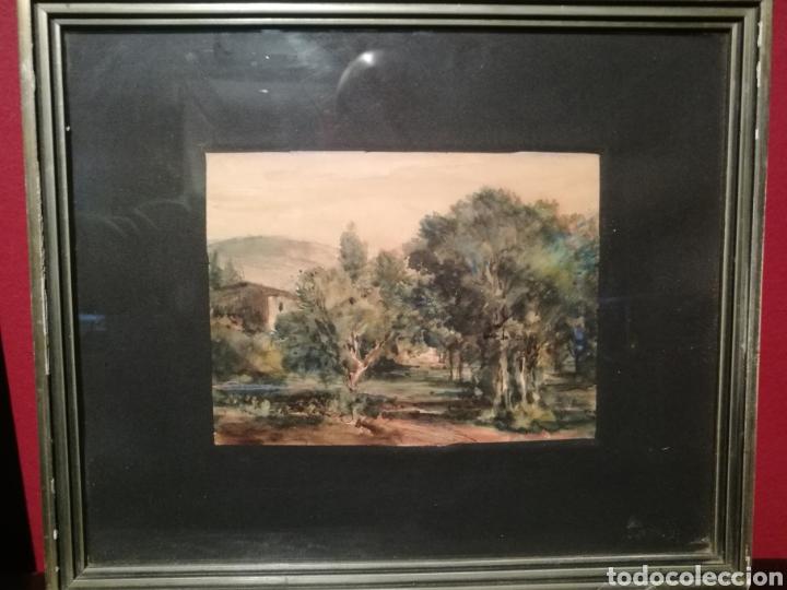 PAISAJE RURAL POR PERE MÁRTIR ARRAUT (PUIGCERDÀ, ÚLTIMO TERCIO DEL S.XIX) (Arte - Acuarelas - Modernas siglo XIX)