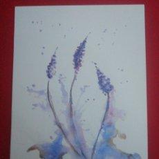 Arte: ACUARELA, FLORES. Lote 238679280
