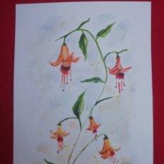 Arte: ACUARELA - FLORES. Lote 238866265