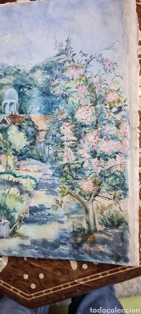 Arte: Acaruela muy bonita 1905 fechada y firmada - Foto 4 - 243414110
