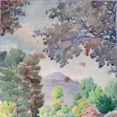 Arte: PAISAJE FIRMADO F. CASANOVAS - ACUARELA SOBRE PAPEL 61X45. Lote 244701275