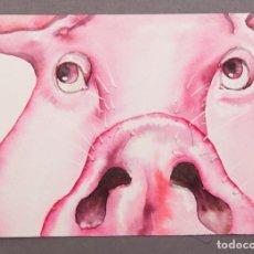 Arte: IVOLY NOGUERA - ACUARELA - CERDO - 1995. Lote 254804175