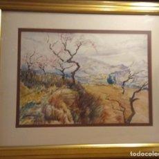 Arte: ACUARELA DEL PREMIADO PINTOR GRAU SANTOS. Lote 267768384