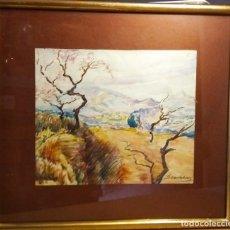 Arte: L'ARBOSSAR ACUARELA DE RAMON SANVISENS. Lote 275230088
