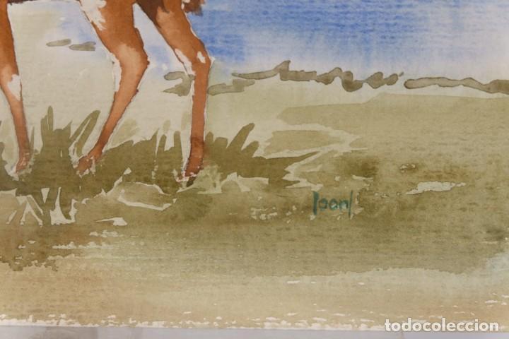 Arte: Acuarela sobre papel Ciervo firmado Joan - Foto 3 - 275537058