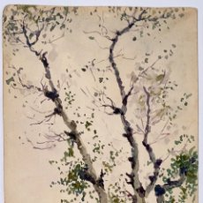 """Arte: DEL POZO Y LA ORDEN, JULIÁN. """"PAISAJE PUENTE GENIL"""" ACUARELA 1887.. Lote 293999813"""
