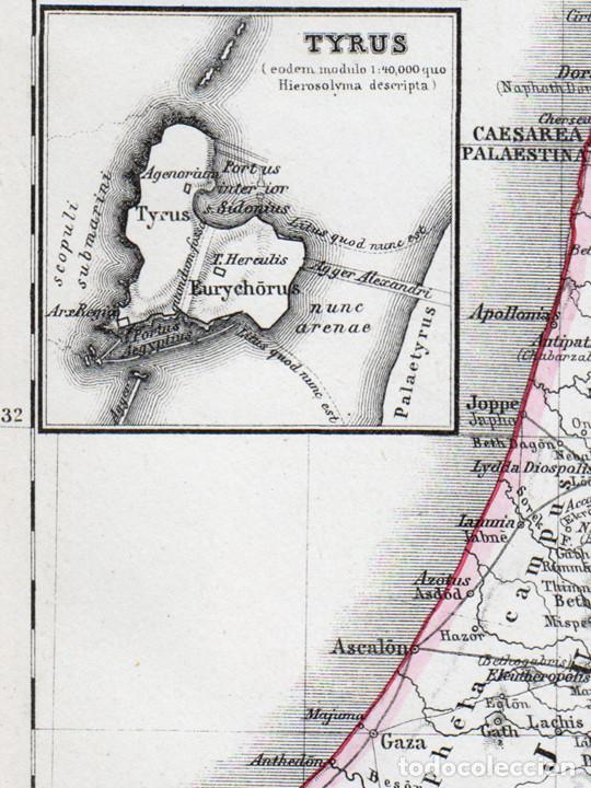 mapa de egipto y fenicia-palestina antiguas de - Comprar Cartografía ...
