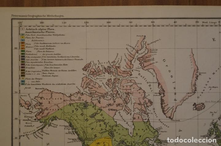 Arte: Mapa de la vegetación en el Mundo, 1866. Perthes - Foto 2 - 121855163